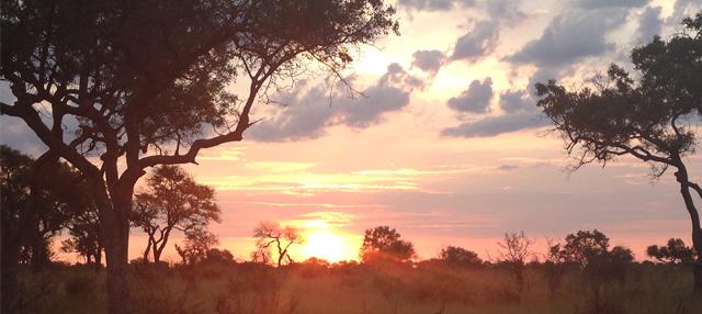 Sunset Kruger