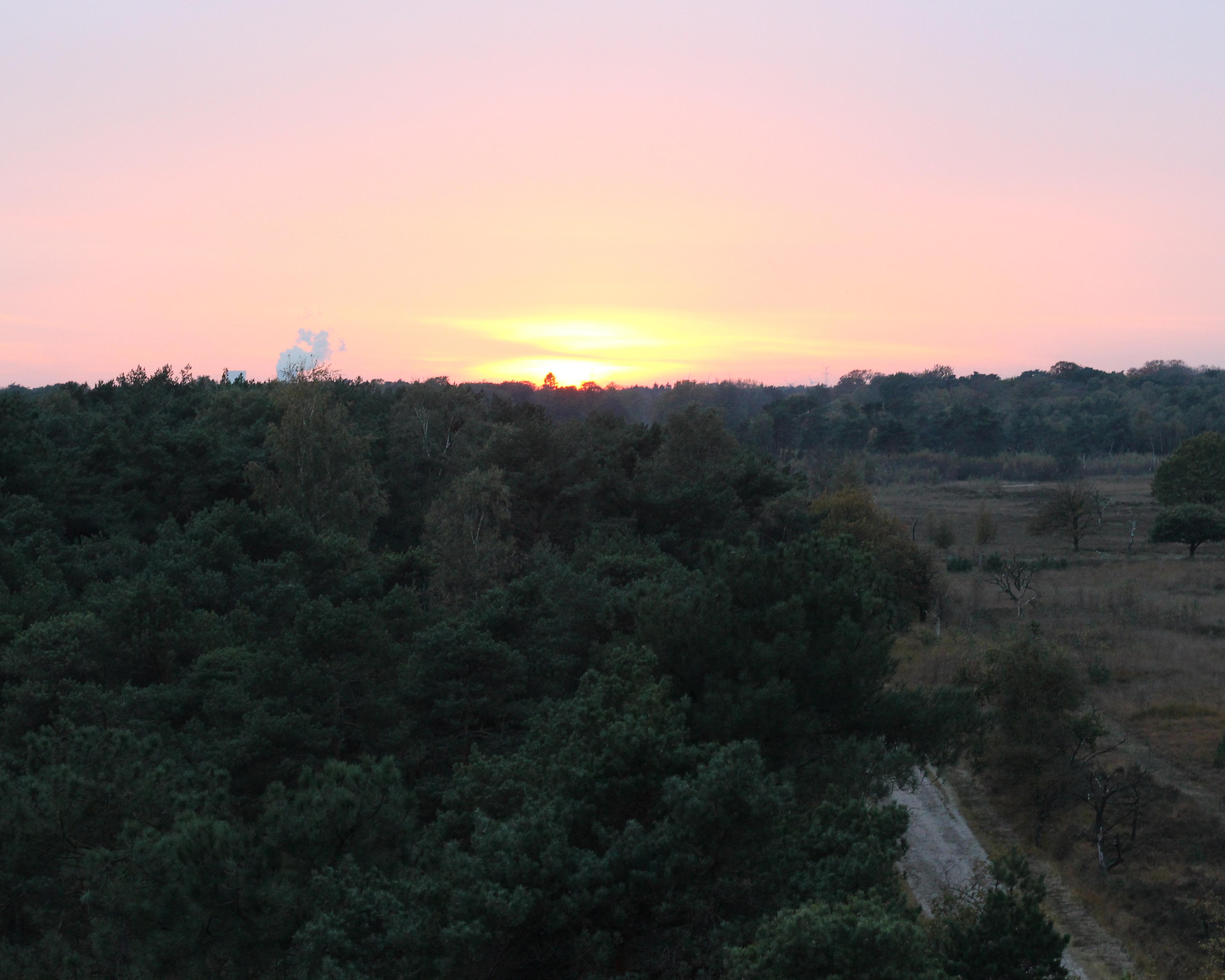Kalmthoutse heide zonsondergang