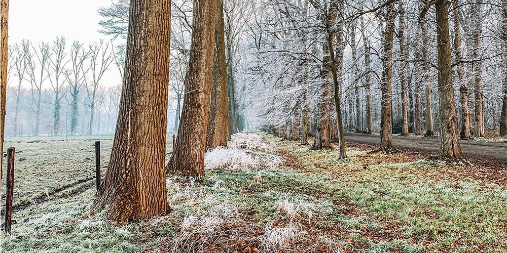 Tips om te starten/blijven lopen deze winter